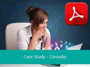 consulio-case-study